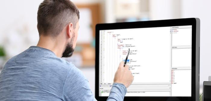 Developer using JSON tool
